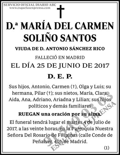 María del Carmen Soliño Santos